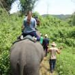 Stock Photo: Elephant riding