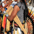Stock Photo: Native South Americmusic