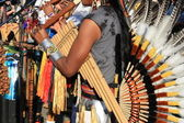 Native South American music — Stock Photo