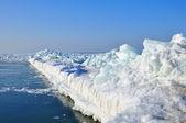 Pierce frozen — Stock Photo