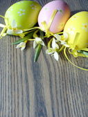 Easter eggs and snowdrops — Foto de Stock