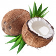 Stock Photo: Coconut on a white background
