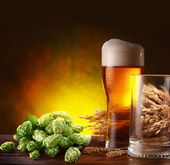 Beer and hops. — Stock Photo