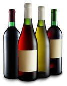 Four bottles of wine — Stock Photo