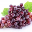 Grape cluster with leaves isolated on a white background — Stockfoto
