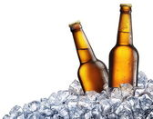 Two bottles of beer on ice — 图库照片