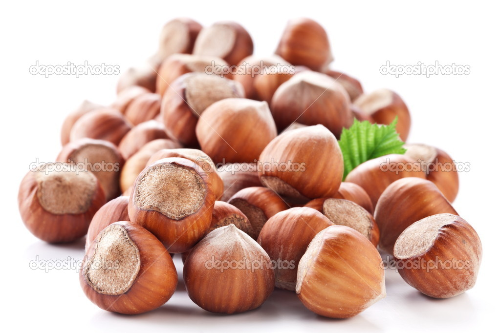 Nuts filberts isolated on white background.  Stock Photo #9599469