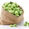 Royalty-Free Stock Photo: Sack of hops on a white background.