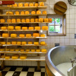 Stock Photo: Cheese production