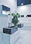 近代的なトイレの部屋 — ストック写真