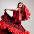 Flamenco, studio shot — Stock Photo #8072629