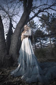 Glamorous vampire in the woods — Stock Photo