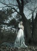 Glamorösa vampyr i skogen — Stockfoto