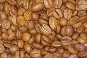 咖啡谷物 — 图库照片