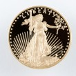 图库照片: AmericEagle Gold Coin Proof 1 oz 50 dollar