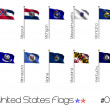 Collection of US Flags — Stock Photo