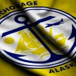Flag of Anchorage — Stock Photo