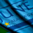 Flag of Juneau — Stock Photo