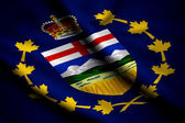 Flag of Lieutenant-Governor of Alberta — Stock Photo