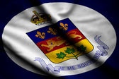 Flag of Lieutenant-Governor of Quebec — Stock Photo