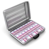 Open Silver Grey Briefcase with Euro Notes — Stock Photo