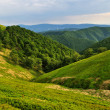 Stock Photo: Borzhavridge slopes in Carpathians