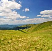 Prados de la montaña de verano — Foto de Stock