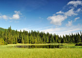 Mysterious Marichaika lake in the forest — Stock Photo