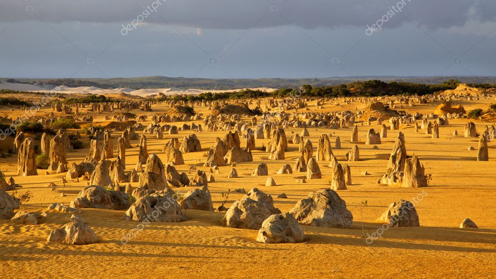 An overview of part of the Pinnacles Desert in the heart of the Nambung National Park, Western Australia. — Stock Photo #8008203