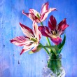 Royalty-Free Stock Photo: Tulips in vase on wood background
