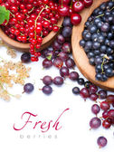 Art Healthy set of fresh berries isolated on white background — Stock Photo