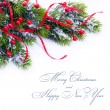 Branch of Christmas tree on white background — 图库照片