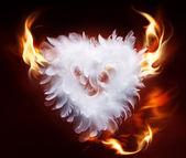 Art soft fluffy heart — Stock Photo