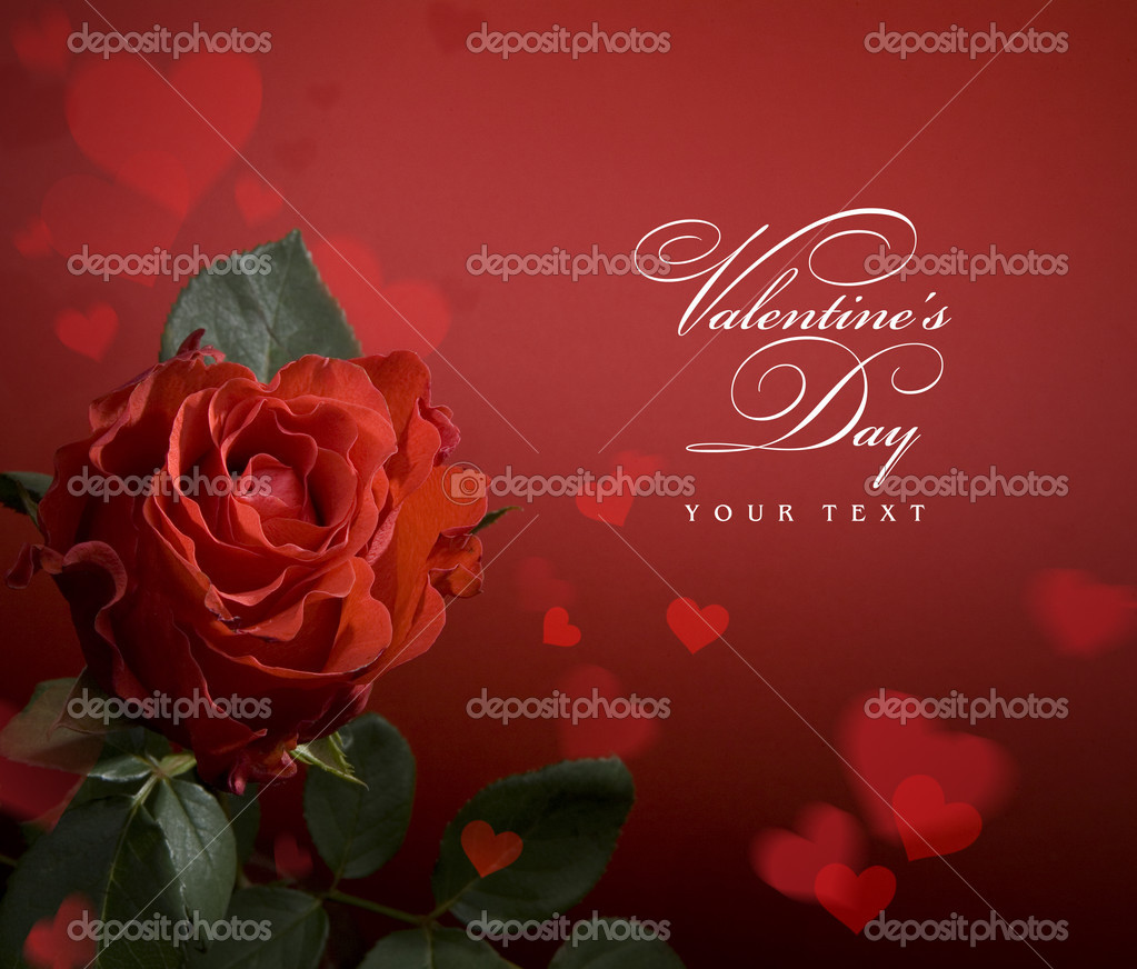 Valentine day greeting card with red roses and heart  Stock Photo #8595943
