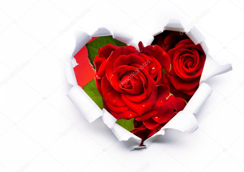 Art bouquet of red roses and the paper hearts on Valentine's Day  Stock Photo #8712613