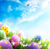 Art Easter eggs decorated with flowers in the grass on blue sky — Foto Stock