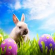 图库照片: Little Easter bunny and Easter eggs on green grass