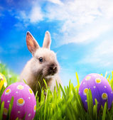 Little Easter bunny and Easter eggs on green grass — Stok fotoğraf