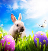 Little Easter bunny and Easter eggs on green grass — 图库照片