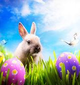 Pequeño conejo de pascua y los huevos de pascua en hierba verde — Foto de Stock