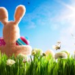 Art Easter teddy bunny and Easter eggs on green grass — Stock Photo #9238904