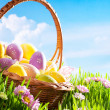Decorated easter eggs in the grass with flower — Stock Photo