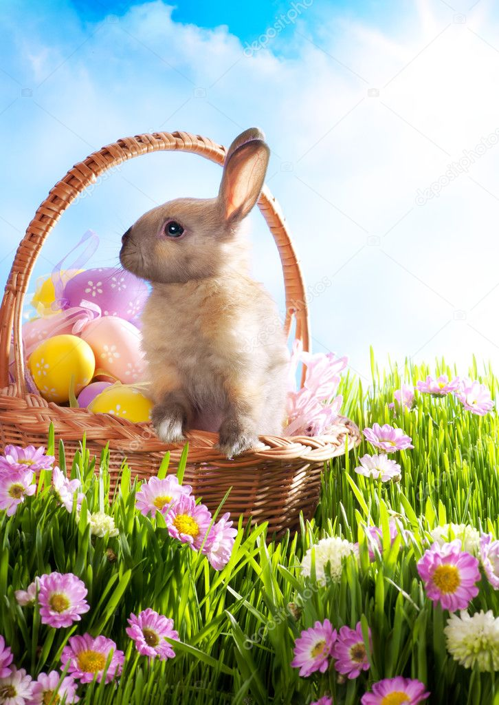 Easter basket with decorated eggs and the Easter bunny in the gr ...