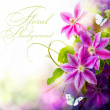 Abstract spring floral background — Stockfoto