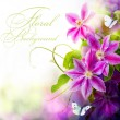 Abstract spring floral background - Stock Photo