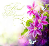 Abstract spring floral background — Stock Photo