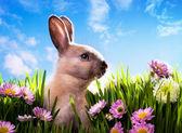 艺术宝贝复活节兔子春天绿色的草地上 — 图库照片