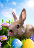 Art easter Baby rabbit and easter eggs — Stok fotoğraf
