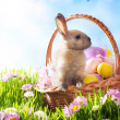 Stock Photo: Easter basket with decorated eggs and Easter bunny