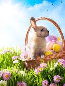 Panier de pâques avec les oeufs décorés et le lapin de pâques — Photo